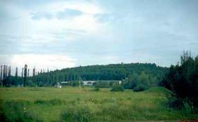 Место расположения замка Вишневецких