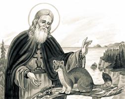 Черепанова Маргарита. Преподобный Герман Аляскинский и его друг дикий соболь