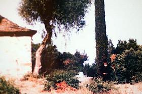 Старец Паисий Святогорец