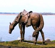 Казацкий конь на берегу Днепра