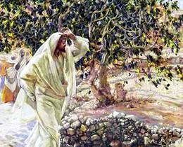 Христос и смоковница