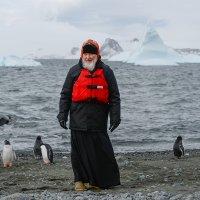 Святейший Патриарх Кирилл и пингвины