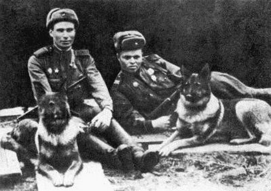 Овчарка Дина и ее проводник Филатов (справа)