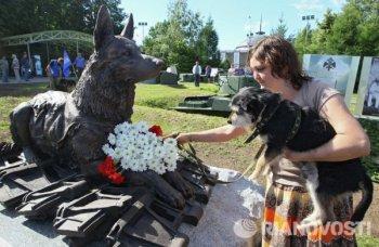 Памятник фронтовой собаке на Поклонной горе